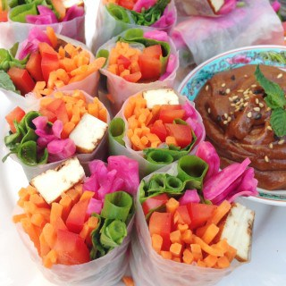 Rainbow Spring Rolls with Peanut Dipping Sauce