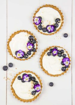blueberry granola tarts