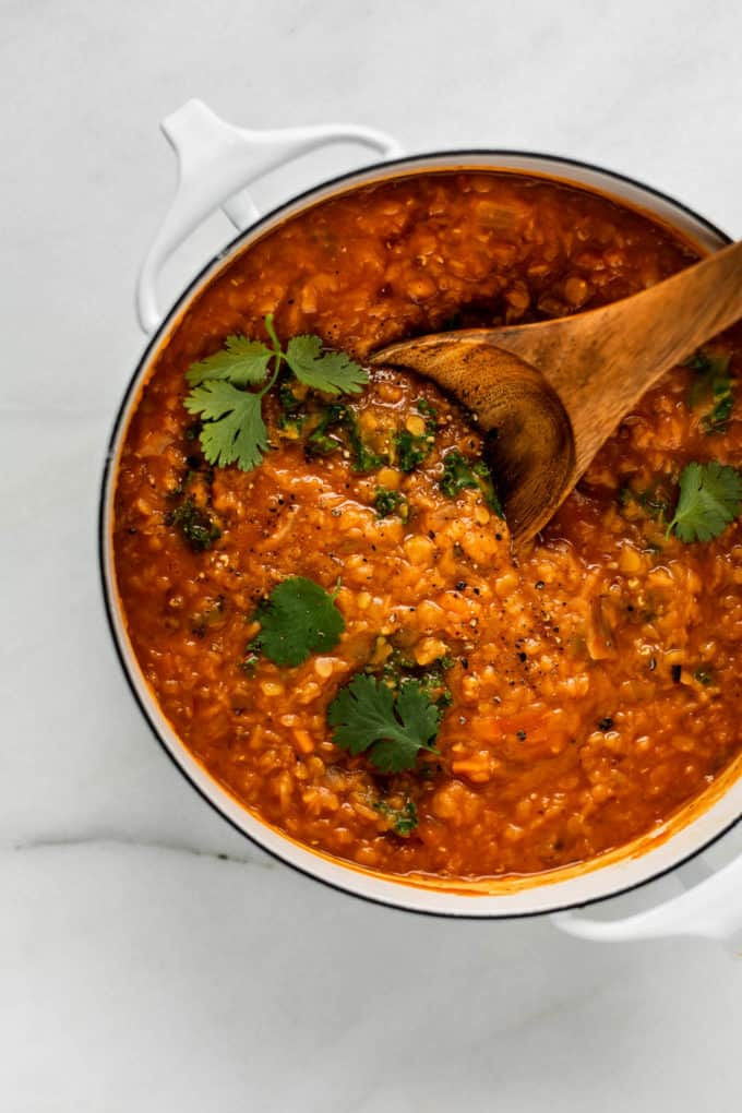 a white pot with red lentil curry in it with some cilantro on top