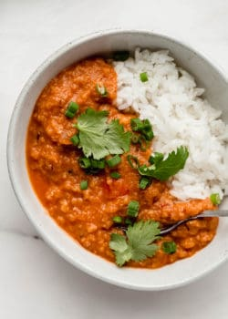 Red lentil curry in a white bowl topped with cilantro
