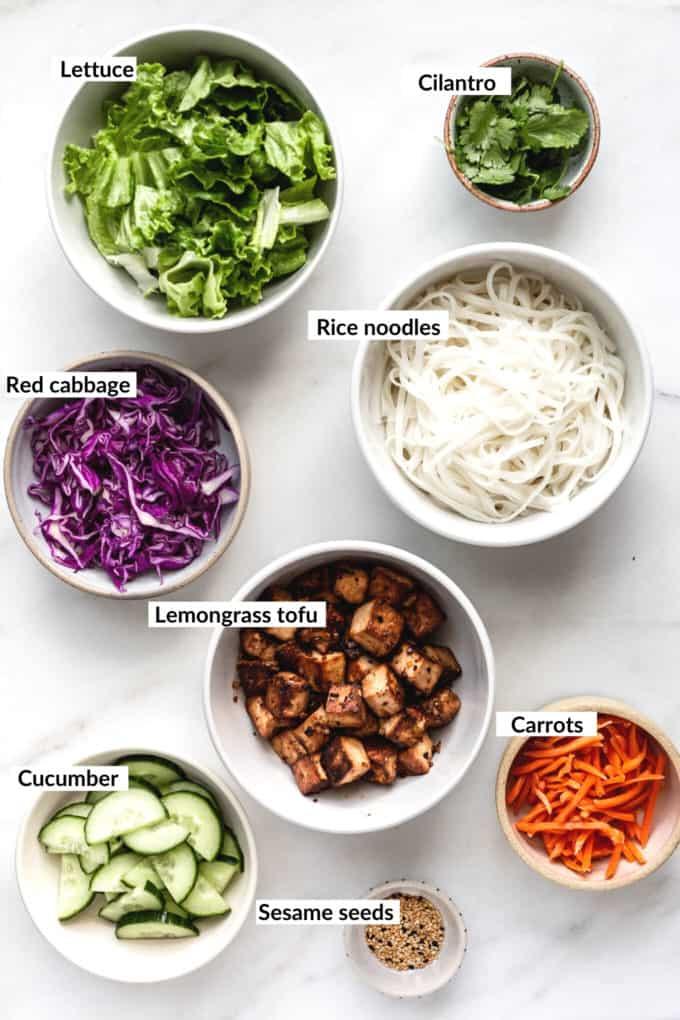Ingredients for Vietnamese Noodle bowls
