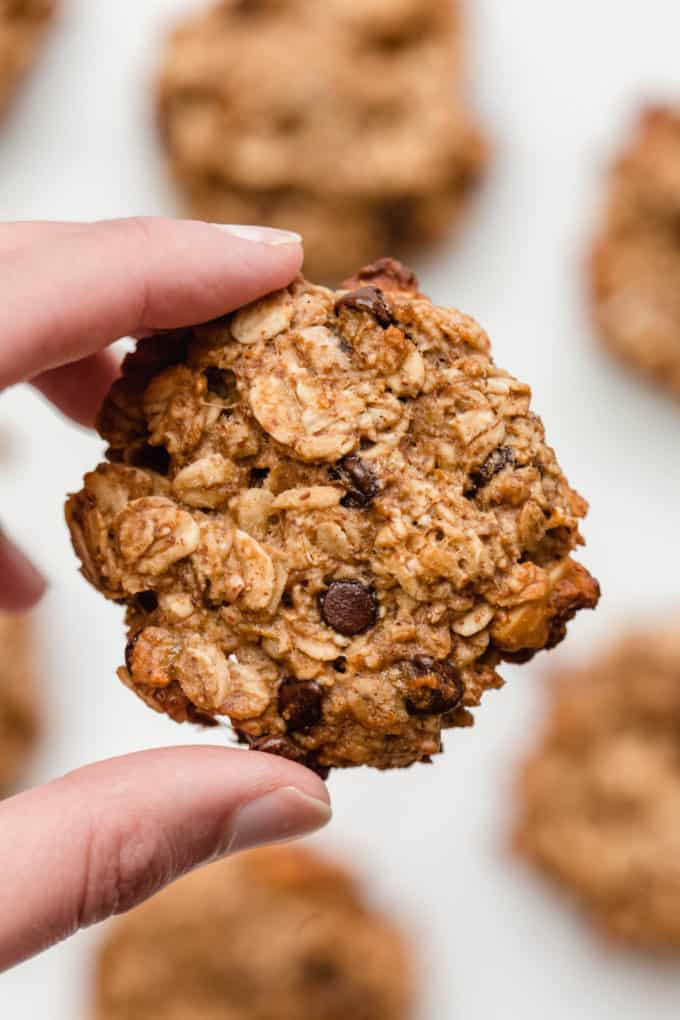 A hand holding an oatmeal banana cookie with chocolate chips