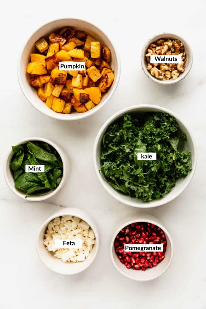 A flat lay of ingredients to make roasted pumpkin salad